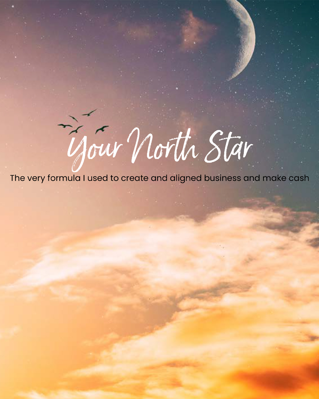 north-star-cover-shop